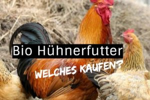 hühnerfutter bio