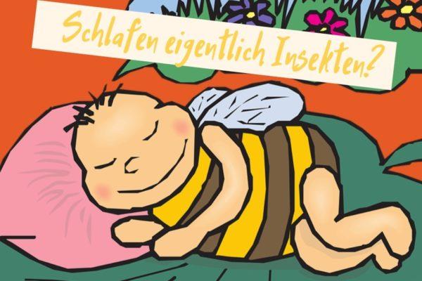 brauchen insekten schlaf?