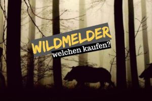 wildmelder