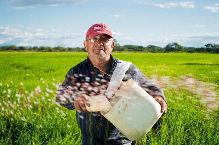 landwirte flirten
