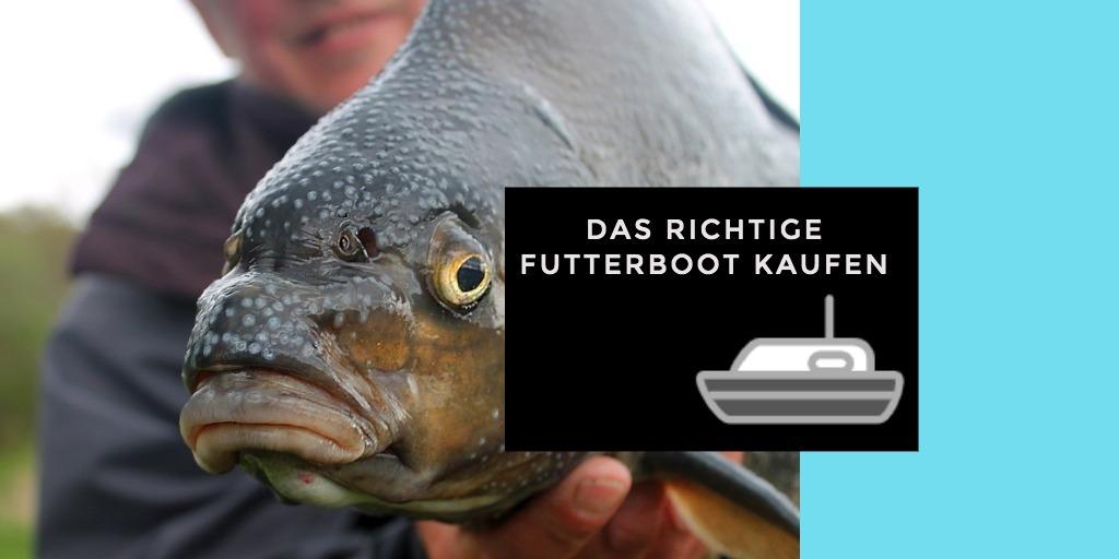 futterboot