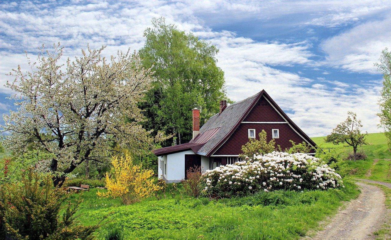 Wie lange stinkt Buttersäure im Garten?