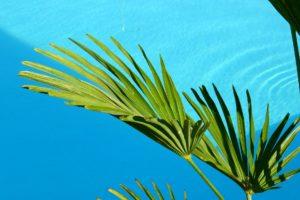 Poolwasser trüb. Was hilft gegen trübes Poolwasser?