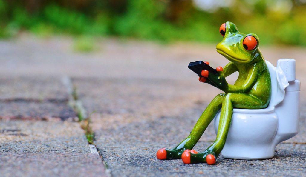 frosch aufm klo