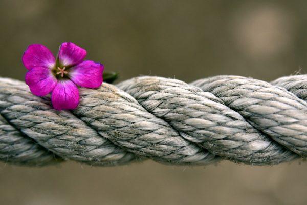 Hanfseil mit Blume