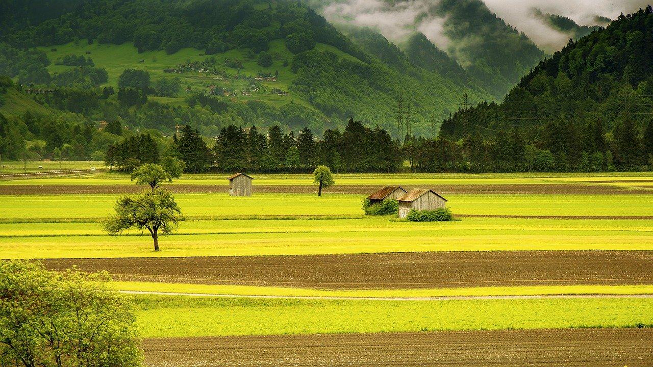 landwirtschaftliche Immobilien